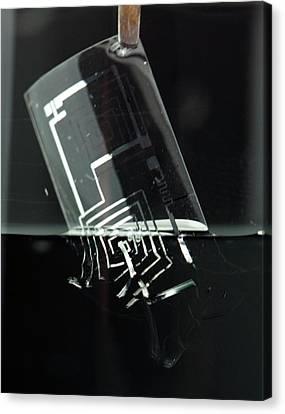Biodegradable Electronic Circuit Canvas Print by Professor John Rogers, University Of Illinois