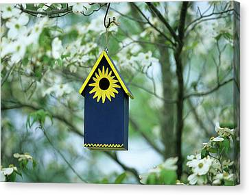 Bird House Nest Box In Flowering Canvas Print
