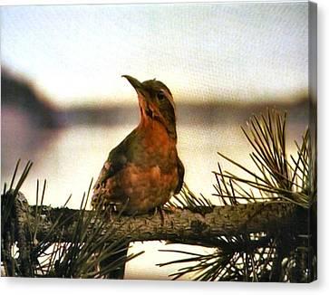 Bird On The Wire Canvas Print by Luis Ludzska