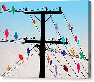 Caricature Canvas Print - Birds  by Mark Ashkenazi
