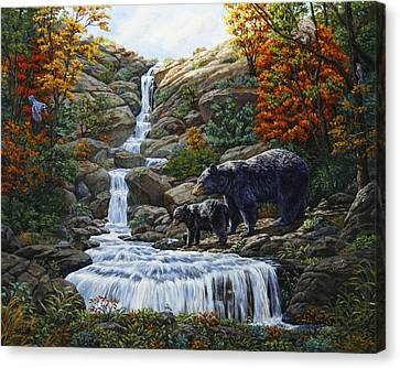 Black Bear Falls Canvas Print by Crista Forest