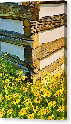 Canvas Print featuring the photograph Black-eyed Susans by Dana Sohr