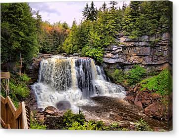 Blackwater Falls Sp Canvas Print