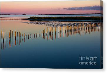 Blackwater Sunset Canvas Print by Ursula Lawrence
