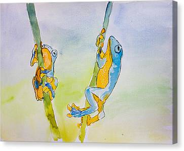 Blue And Orange Tree Frogs Canvas Print by Pati Photography