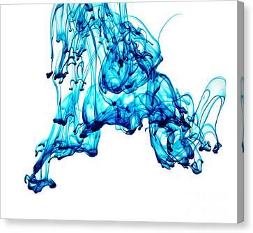 Blue Descent Canvas Print by Liz Masoner