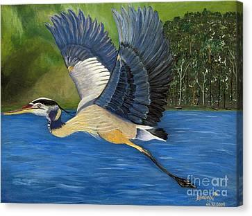 Canvas Print featuring the painting Blue Heron In Flight by Brenda Brown