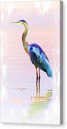 Blue Heron Canvas Print by John  Kolenberg