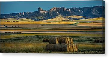 Bluff Country Canvas Print