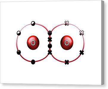 Bonding Canvas Print - Bond Formation In Oxygen Molecule by Animate4.com/science Photo Libary