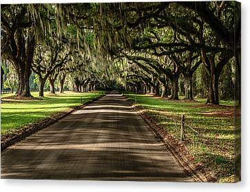 Boone Plantation Road Canvas Print by John Johnson