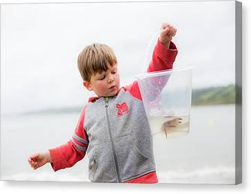 Boy Holding Crab Canvas Print by Samuel Ashfield