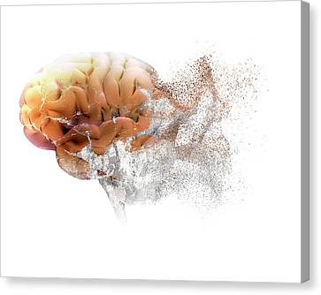 Brain Disease Canvas Print