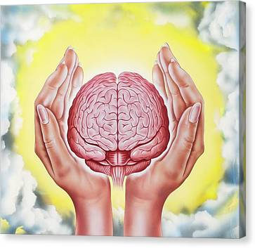 Brain Protection Canvas Print