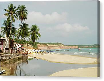Brazil, Rio Grand Do Norte, Praia Da Canvas Print