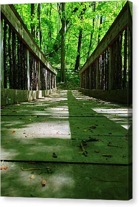 Bridge In The Woods Canvas Print by Andrew Martin
