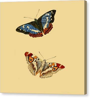 British Butterflies Canvas Print by Philip Ralley