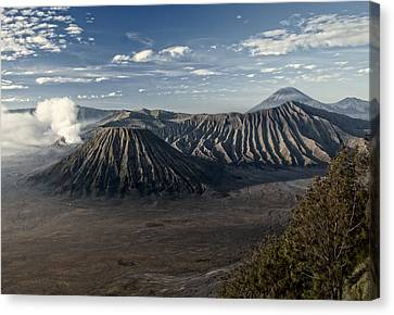 Bromo Mountain Canvas Print by Miguel Winterpacht