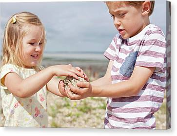 Brother And Sister Collecting Stones Canvas Print