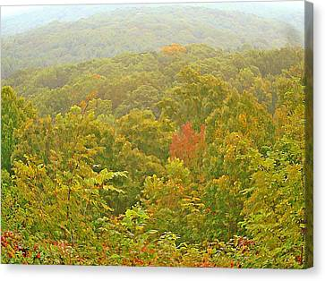 Brown County Beginnings Canvas Print by BackHome Images