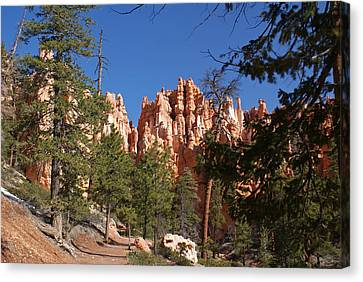 Bryce Canyon National Park Canvas Print by Michael J Bauer