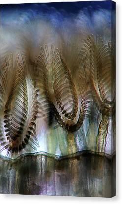 Bryozoans Canvas Print