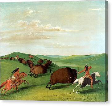 Buffalo Chase With Bows And Lances Canvas Print by George Catlin