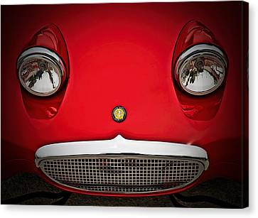 Bug Eyed Sprite Canvas Print by Douglas Pittman