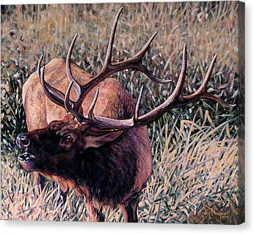 Canvas Print featuring the painting Bugle Boy by Craig T Burgwardt