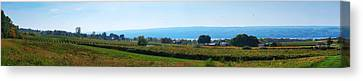 Bull Horn Creek Farm Wineyard New York Panoramic Photography Canvas Print