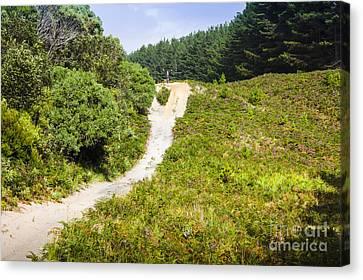 Bushwalking Adventure Man On Western Tasmania Tour Canvas Print