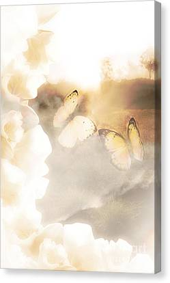 Butterfly Dreams Canvas Print by Jorgo Photography - Wall Art Gallery