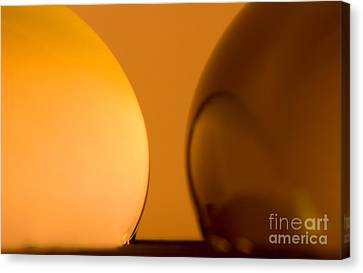 Vivid Canvas Print - C Ribet Orbscape 0205 by C Ribet