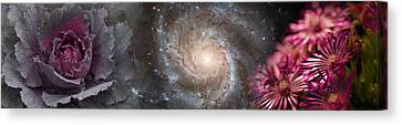 Cabbage With Galaxy And Pink Flowers Canvas Print