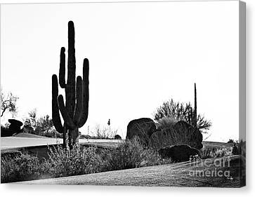 Cactus Golf Canvas Print by Scott Pellegrin