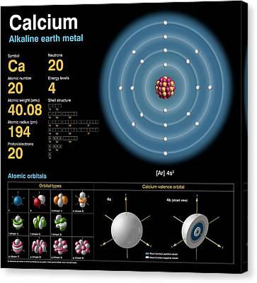 Calcium Canvas Print by Carlos Clarivan