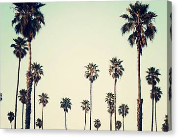 California Love  Canvas Print by Bree Madden