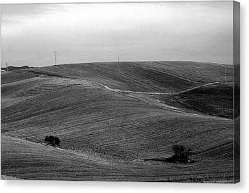 Trees Countryside Hills Canvas Print