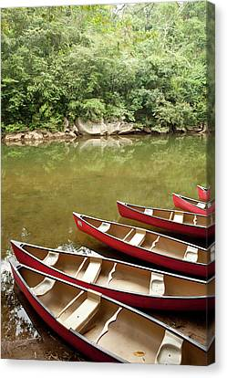Canoeing The Macal River In Jungle Area Canvas Print by Michele Benoy Westmorland