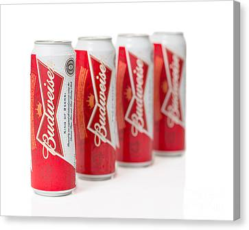Cans Of Budweiser Beer Canvas Print by Amanda Elwell