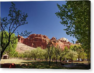 Capitol Reef Evening Canvas Print by Michael J Bauer