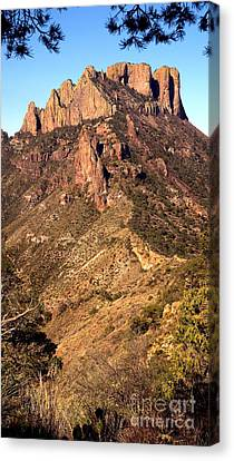 Casa Grande Mountain, Big Bend, Texas Canvas Print by Gregory G. Dimijian, M.D.