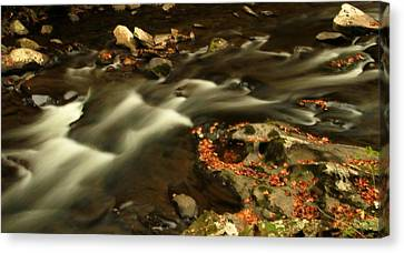 Cascades In Autumn Canvas Print by Dan Sproul