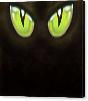 Cat Eyes Canvas Print by Kevin Middleton