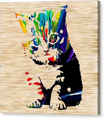 Kitten Canvas Print - Cat Kitten by Marvin Blaine