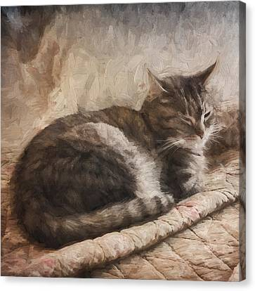 Cat On The Bed Painterly Canvas Print