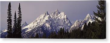 Cathedral Group Grand Teton National Canvas Print by Panoramic Images