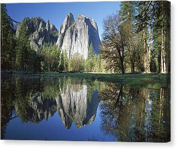 Cathedral Rock And The Merced River Canvas Print by Tim Fitzharris