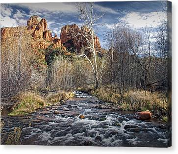 Cathedral Rock In Sedona Canvas Print by Randall Nyhof