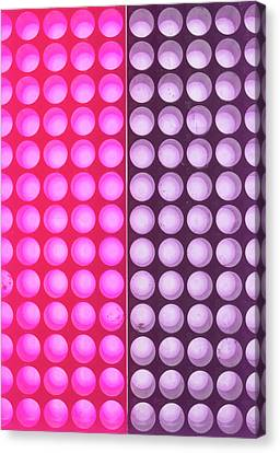 Laboratory Equipment Canvas Print - Cell Culture Plate by Natural History Museum, London